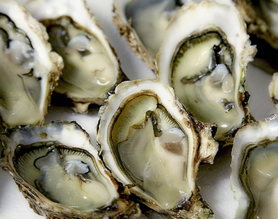 Best Oysters Bars in Nashville