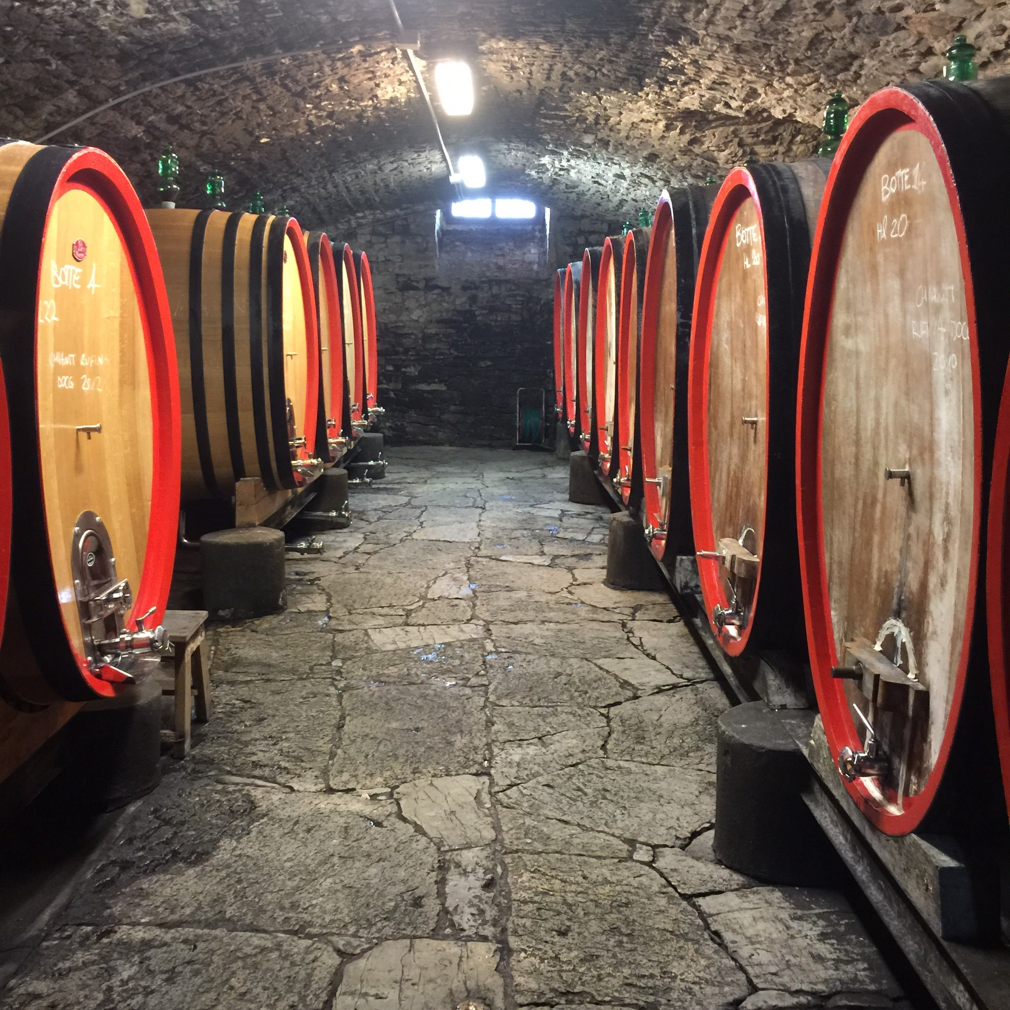 Day Trips From Florence | Wine barrels on the tour