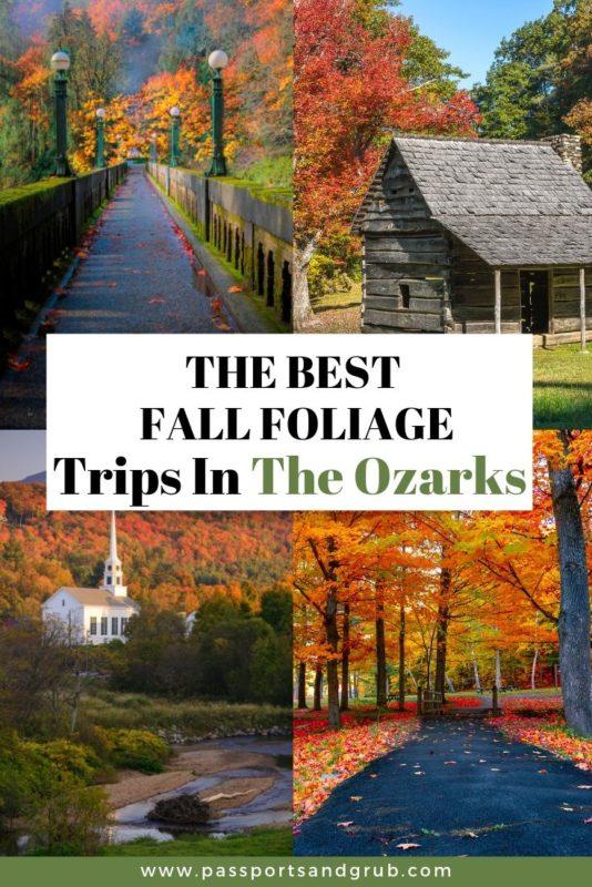 Fall Foliage Trips - Ozarks Arkansas