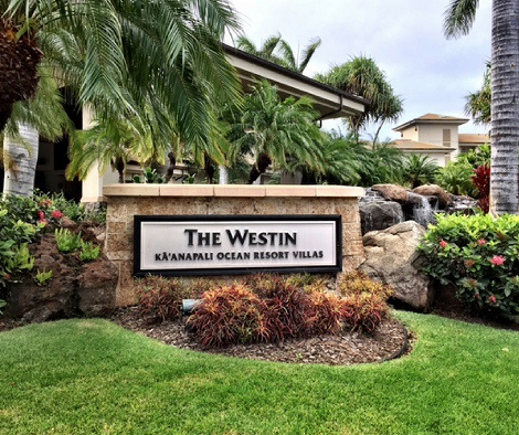 Image result for maui westin
