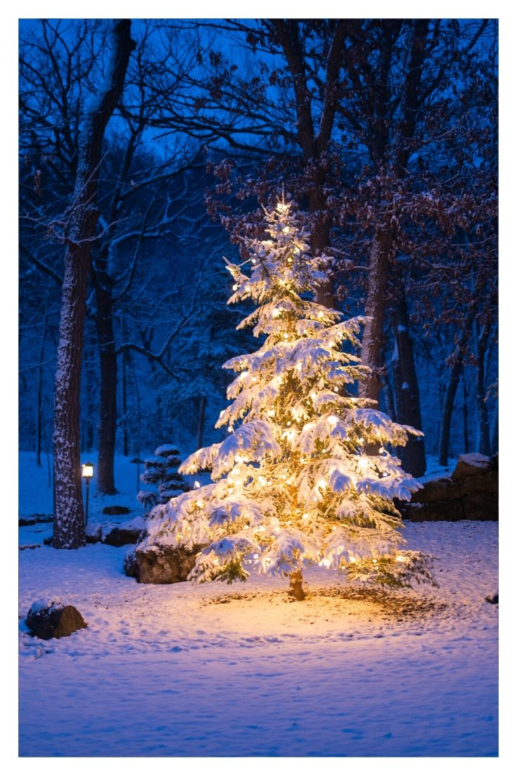 Christmas in Gatlinburg