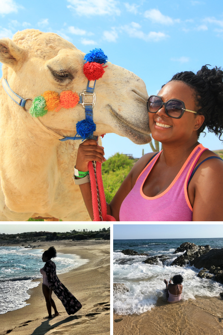 Camel Riding in Los Cabos, Playing in the Ocean in Los Cabos| Is Mexico Safe