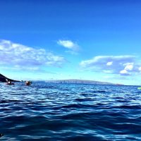 50 Things To Do in Kona Hawaii For Your Best Vacation Ever