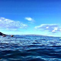 Kayak Kona with Kona's #1 Rated Kayak Shop, Kona Kayak Rental, Tours