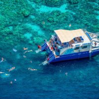Kona Snorkel Tours | Fair Wind Cruises