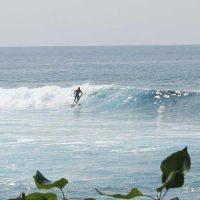 Kona Surfing Spots, Lessons Board Rental, Sales, Surf Forecast