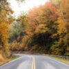 Travel Insurance for road trips
