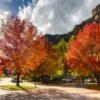 colorado fall colors